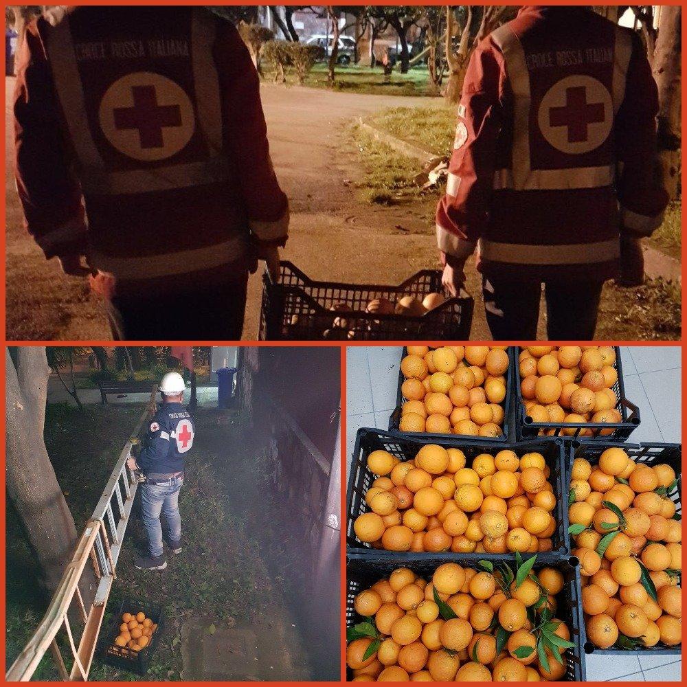 Raccolta di Arance solidali per le famiglie del territorio! – Croce Rossa Agro